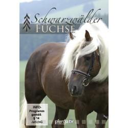 Schwarzwälder Füchse, DVD