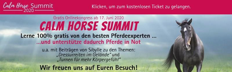 Calm Horse Academy - Summit 2020