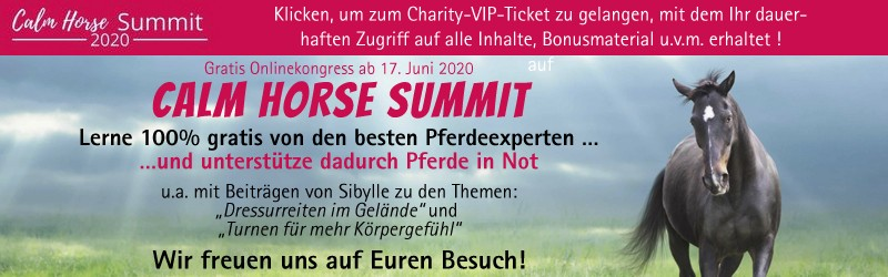 Calm Horse Academy - Summit 2020 VIP